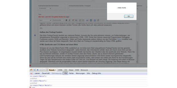 In der Konsole von Firebug können Sie sofort Javascript-Code eingeben