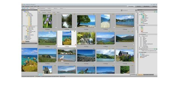 ACDSee Foto-Manager 12.0.342