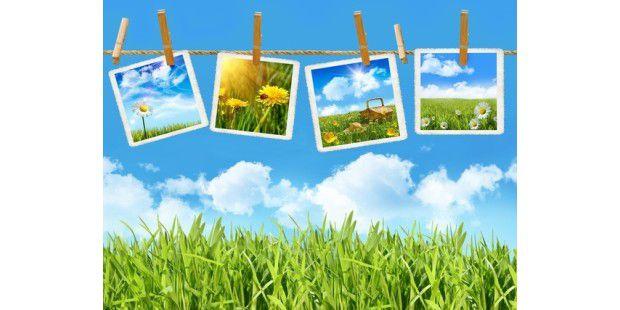 Fotos im Web veröffentlichen