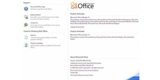 Die neue Office 15 Version soll noch besser mit denanderen Microsoft-Produkten zusammenarbeiten.