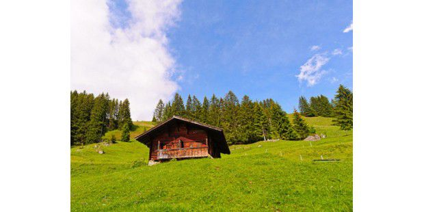 In der Schweiz<BR>