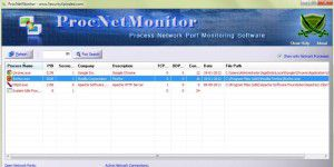 Proc Net Monitor
