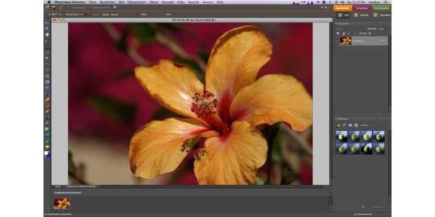 Adobe Photoshop Elements 6 Hauptansicht
