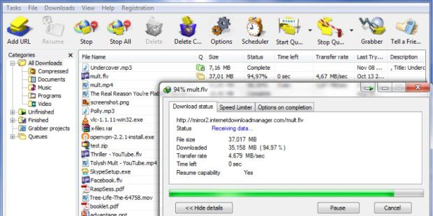 Online-Tool: Internet Download Manager
