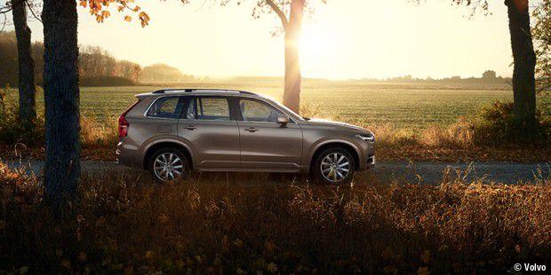 Selbstfahrende Volvos erkennen Kängurus nicht